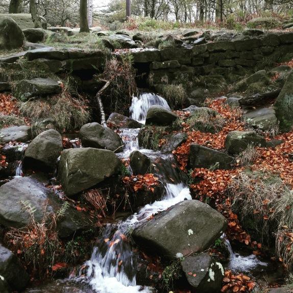 Padley Gorge 1